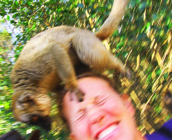Madagaskar selfie med lemur